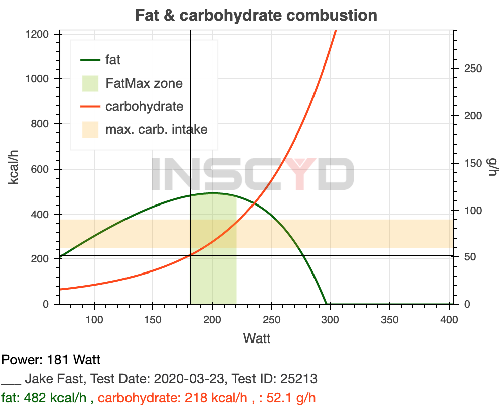 Fat – Carbohydrate 2